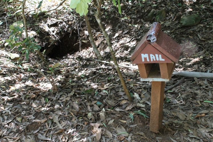 Wombat house-burrow and accompanying mailbox.