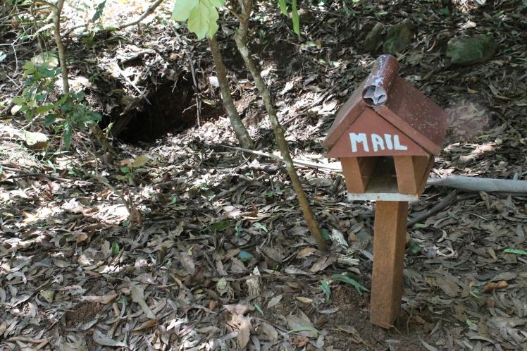 Wombat house-burrow and accompanying mailbox.