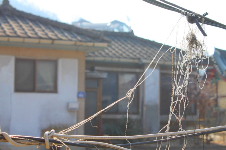 Makeshift wire and string fences are common; I love how it gives it a rundown texture but it's evident that someone took the time to tie the string there in the first place.