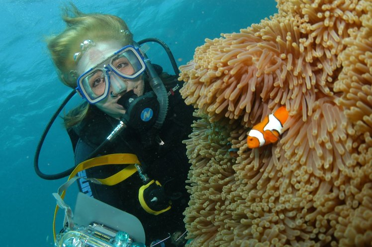 Nemo fish in anemone at the Great Barrier Reef!!