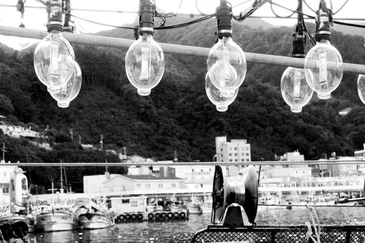 View of Ulleungdo harbour from deck of fishing boat which we were kindly enough allowed to stand on.