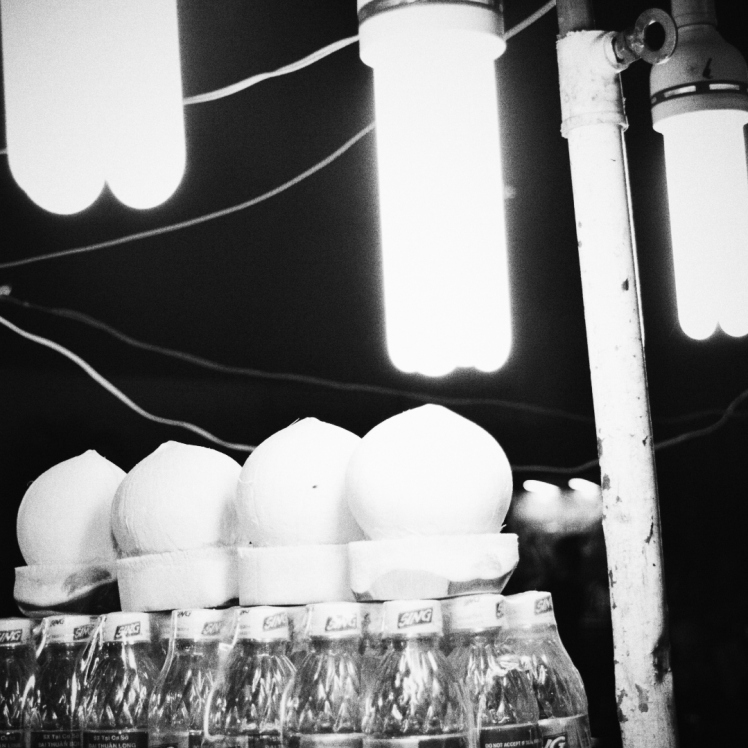 Chilled coconuts tantalizingly illumined by fluorescent bulbs.