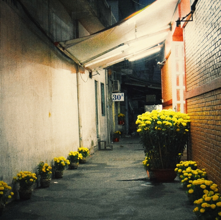 Even the alleyways are decorated.