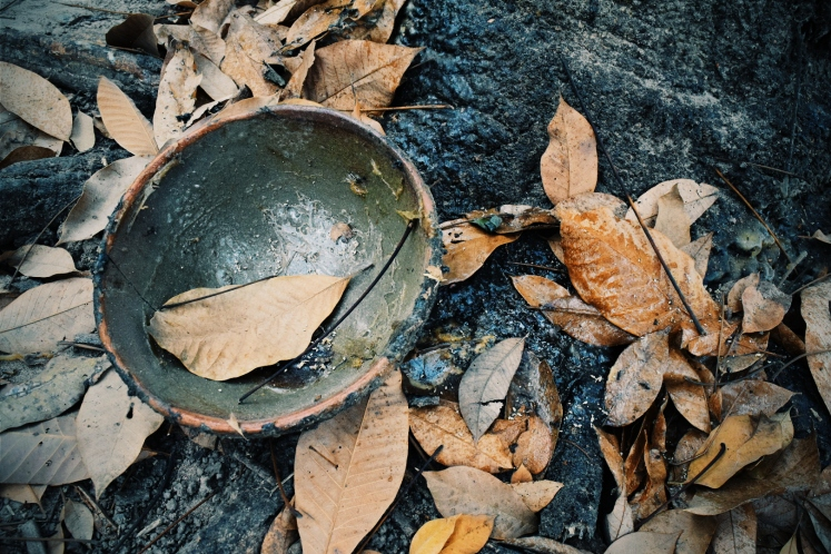 Bowl used to catch rubber tree sap.