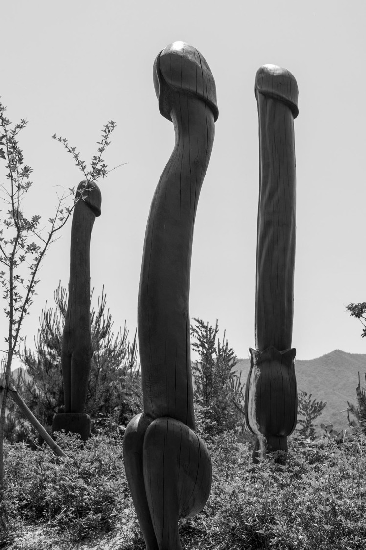 Long-necked penis totems.