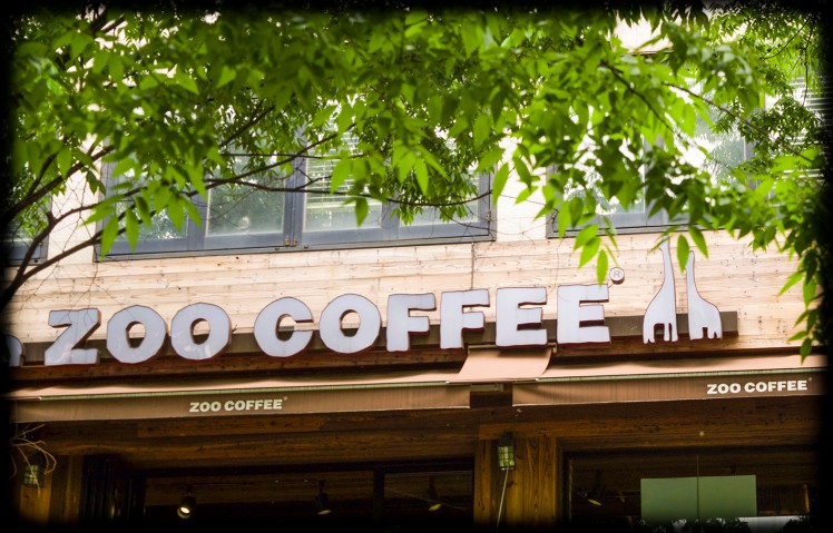 Zoo Coffee: a coffee chain that specializes in animal décor. Ricky and I have one close to our apartment in Cheongju.