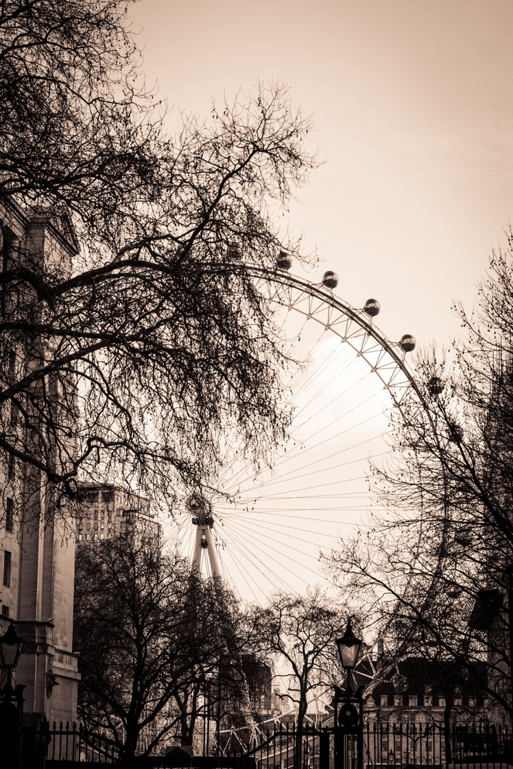 2016 London January London Eye from Downing Street small