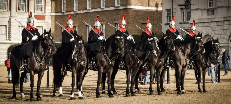 2016 London January Row of Navy Horse Guards small