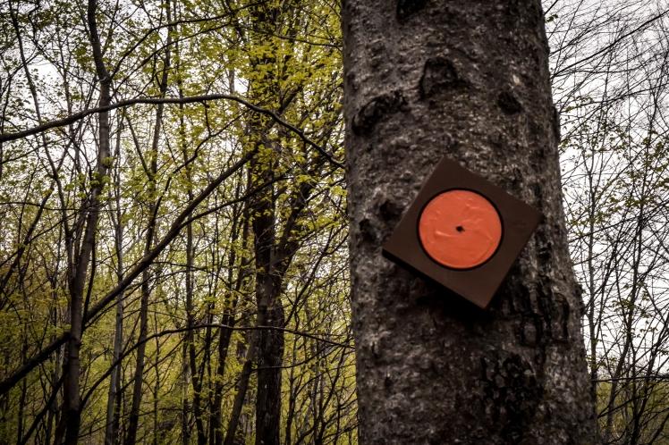 2016 Hiking Mont Saint Hilaire Orange Trail Dot small