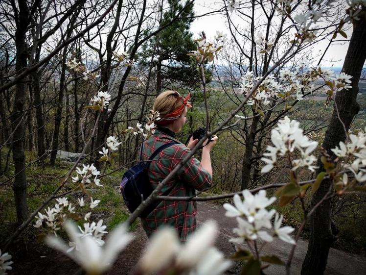 2016 Hiking Mont Saint Hilaire Shiloh's Portrait of Me