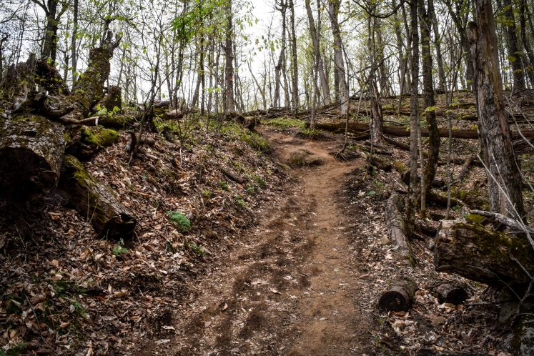 2016 Hiking Mont Saint Hilaire Trail on Hill small