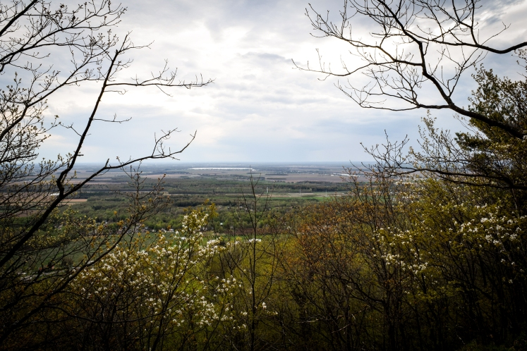 2016 Hiking Mont Saint Hilaire View From Lookout small